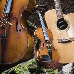 a cello, violin & guitar on the ground in a forest - live folk music at The Hub at St Mary's Lichfield